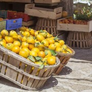 zitronenpresse-vive-citrus-5