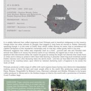 ethiopia-rocko-mountain-reserve-1