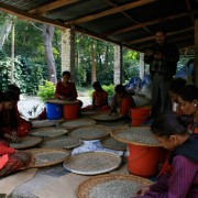 haessig-und-haessig-yeti-kaffee-bio-nepal-19