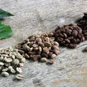 haessig-und-haessig-yeti-kaffee-bio-nepal-23