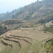 haessig-und-haessig-yeti-kaffee-bio-nepal-8
