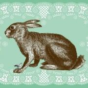 11 charmante und stimmungsvolle Postkarten mit Tiersujets von Yvonne Portmann entworfen, jede ein einzigartiger Hingucker